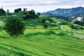 大切に守られてきた日本の棚田を未来にも ~美しい原風景と今後の課題~