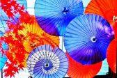 和傘の、ため息が出るほどの造形美。雨の日は粋に和傘で出かけましょう