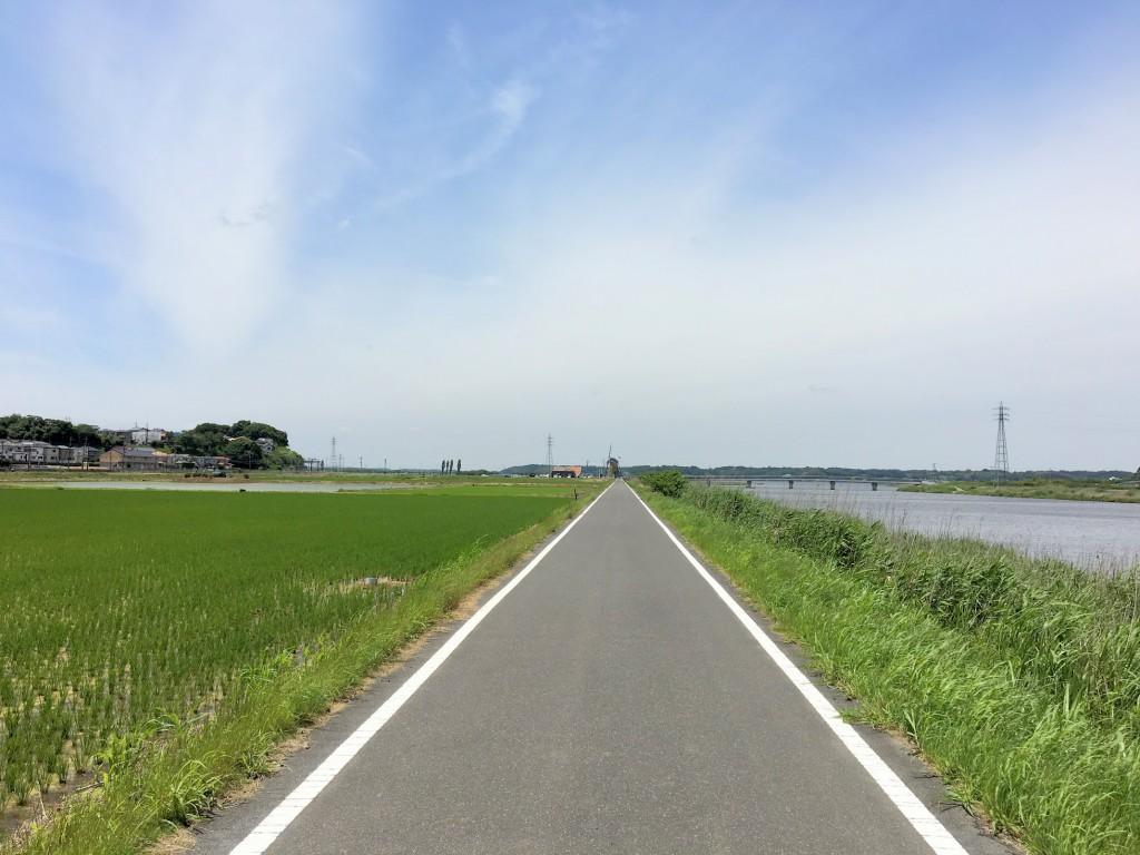 佐倉のサイクリングロード