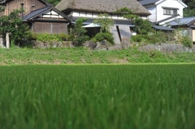 櫨ノ谷窯の写真1